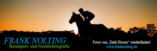 Frank Nolting - Banner